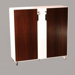 Morgan 48 inch Melamine Storage Cabinet Teak and White