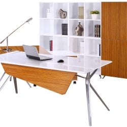 Louis Right Return Veneer L Shape Desk Zebra Staged with props and storage pieces
