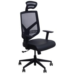 goSIT TF-15ZBL Mesh and Leather Executive Chair with Headrest